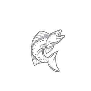 Captain Matt Starling | In Shore Fishing Charters | Custom Marine