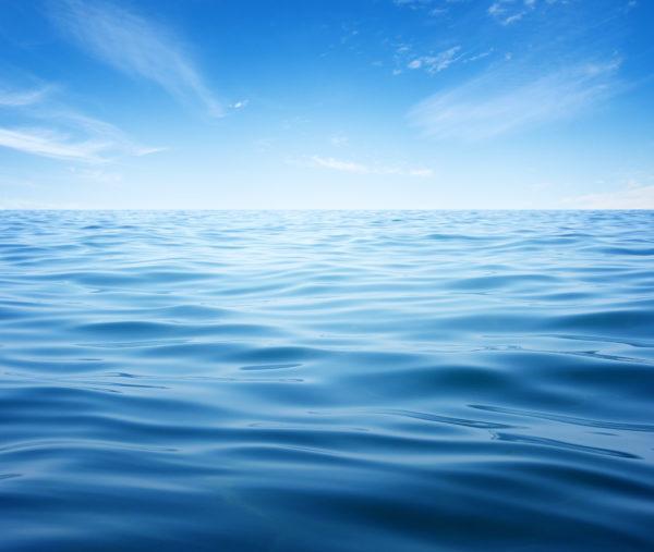Custom Marine | Boat Dealer Statesboro, GA | Boat Service | Boats For Sale | Savannah, GA